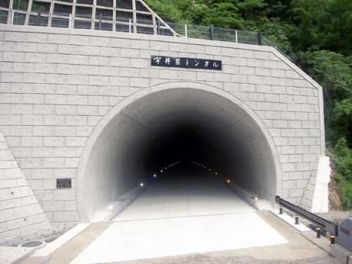国道424号(仮称修理川1号トンネルその2) 道路改築工事